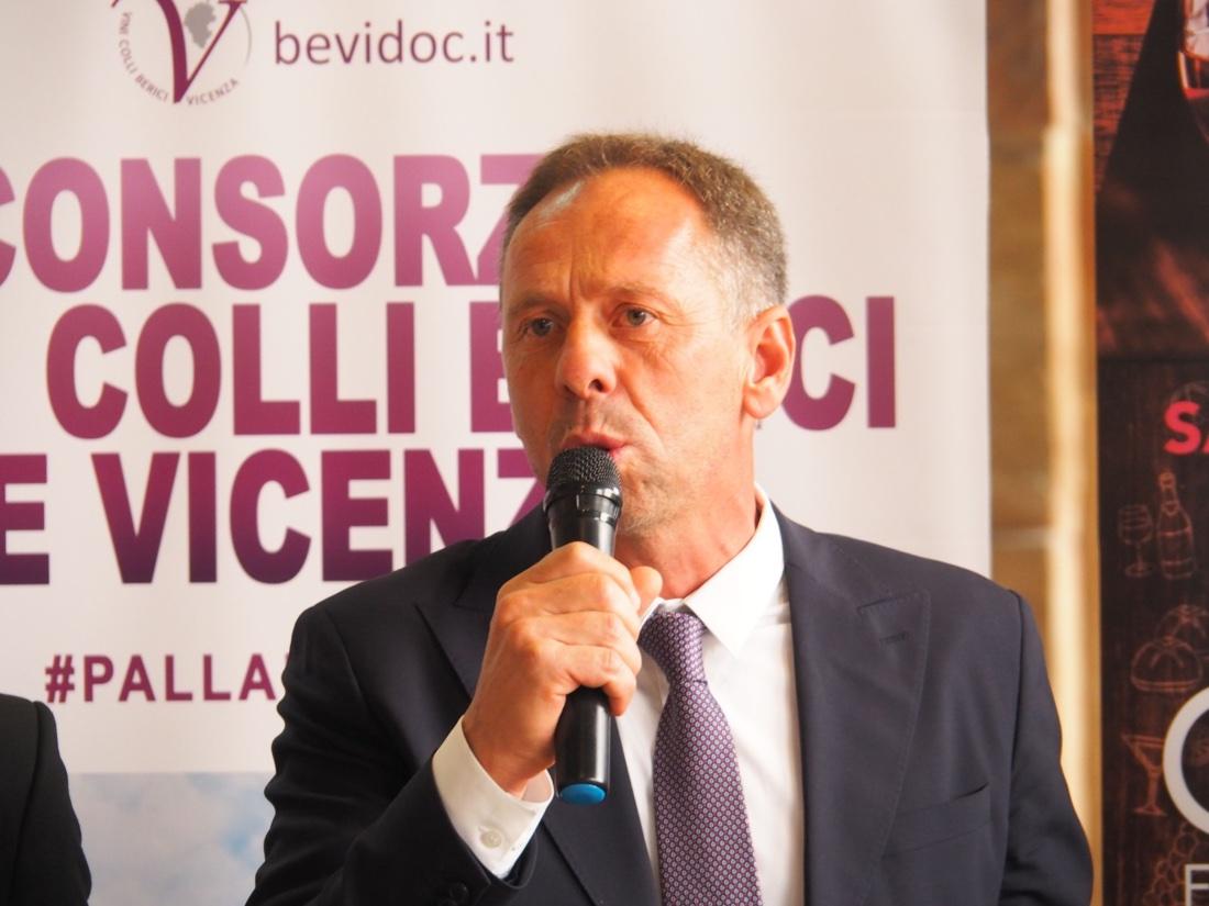 Silvio Dani, Consorzio dei Vini dei Colli Iberici e Vicenza